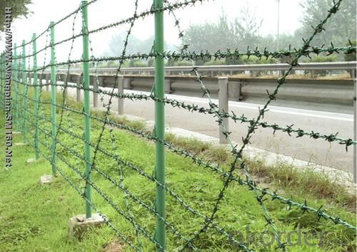 Galvanized Razor Barbed Wire / Barbed Wire