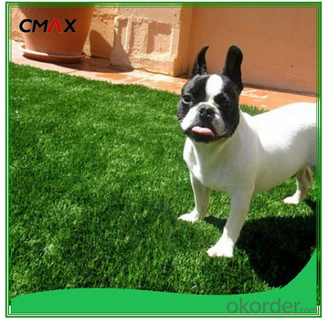 Cleaning and removing blots of best artificial grasses for dogs