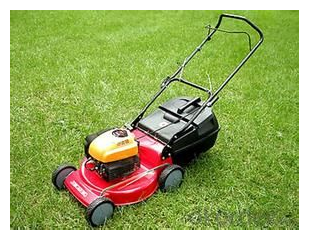 OKorder best place to buy a lawn mower