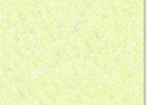 Porcelain Tiles  Light Green CMAX23603