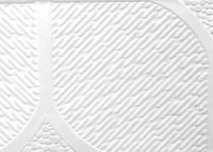 Peforated Aluminum Ceiling with Brand CMAX