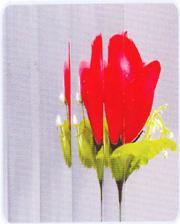 Patterned Glass-Mora