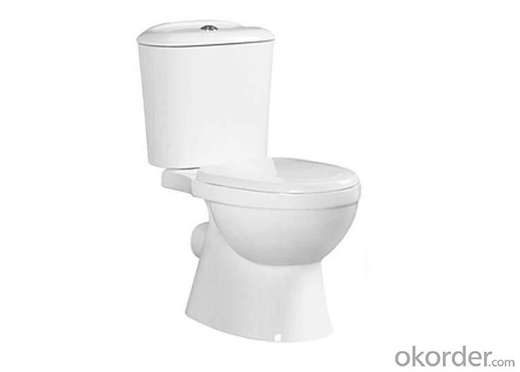 Ceramic Toilet CNT-1017