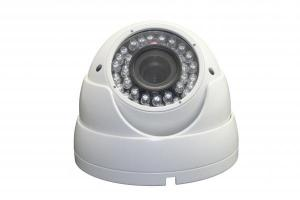 Outdoor & Indoor Color IR Dome Cameras for Building Monitoring System