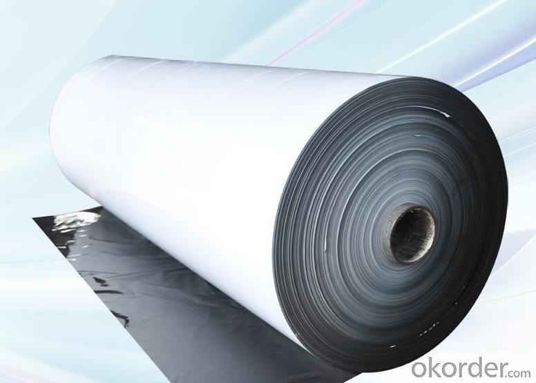 PE Protective Film Black & White S120-50BW
