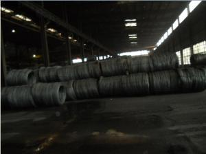 Cheap Stainless Steel Wire