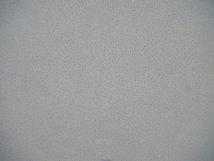 Mineral Fiber Ceiling - Perlite Sand