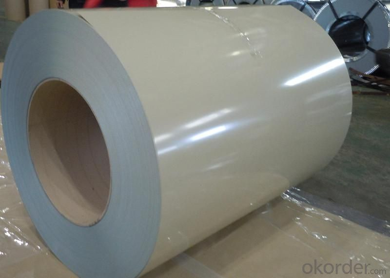 Prepainted Aluzinc Steel Coil-RAL 6003, AZ 50-AZ 150