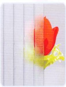 Patterned Glass-wanji