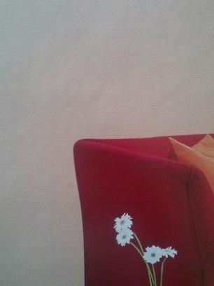 Fiberglass Wallcovering Cloth-100g/m2