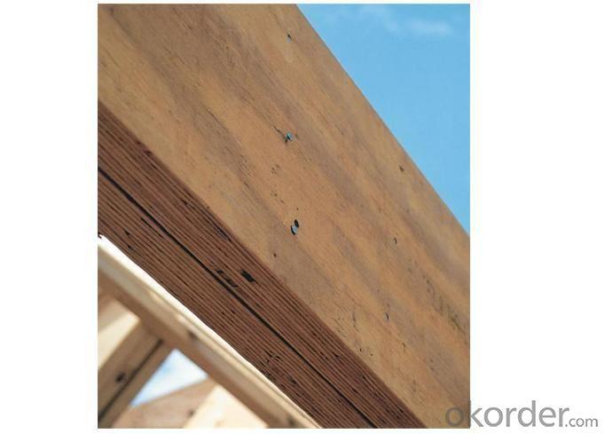 High Quality Pine LVL (Laminated Veneer Lumber)
