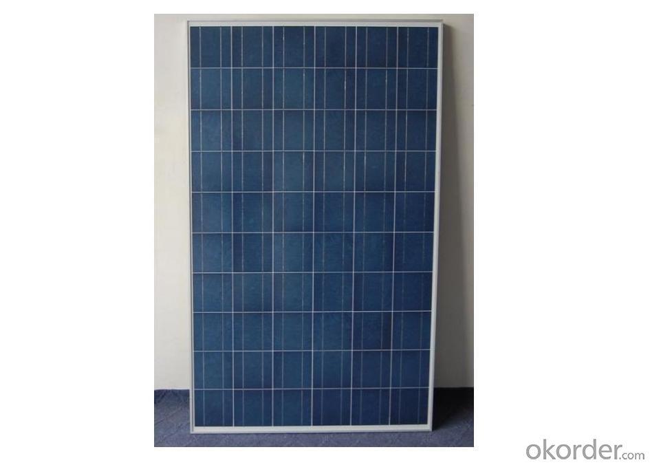 Poly Solar Panels CNBM (250W-260W)