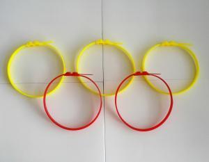 Nylon cable Tie HS-550FL