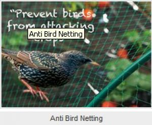 Extruded Anti-bird Net