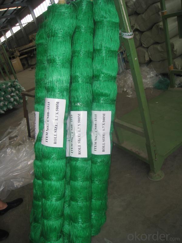 Plant Support Net Anti bird Net Extruded Grape Net
