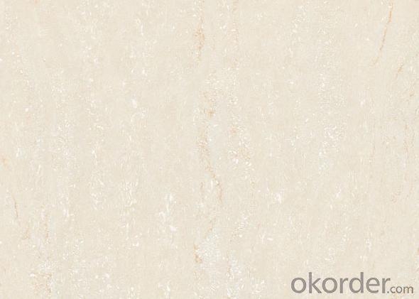 Polished Porcelain Tile C-W28603