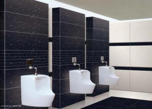 Porcelain Tiles  Policrystalline Stone CMAX23608