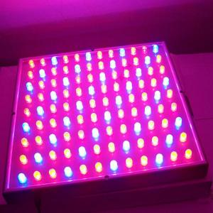 High Quality UV Plant LED Light