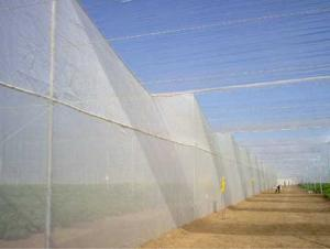 Anti-insect Net-85g for Greenhouse Plant