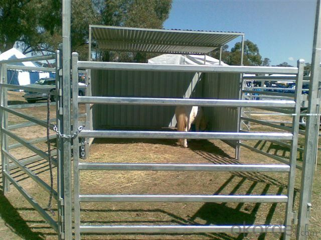Livestock Fence with Steel Pipe