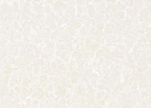 Polished Porcelain Tile CH26601