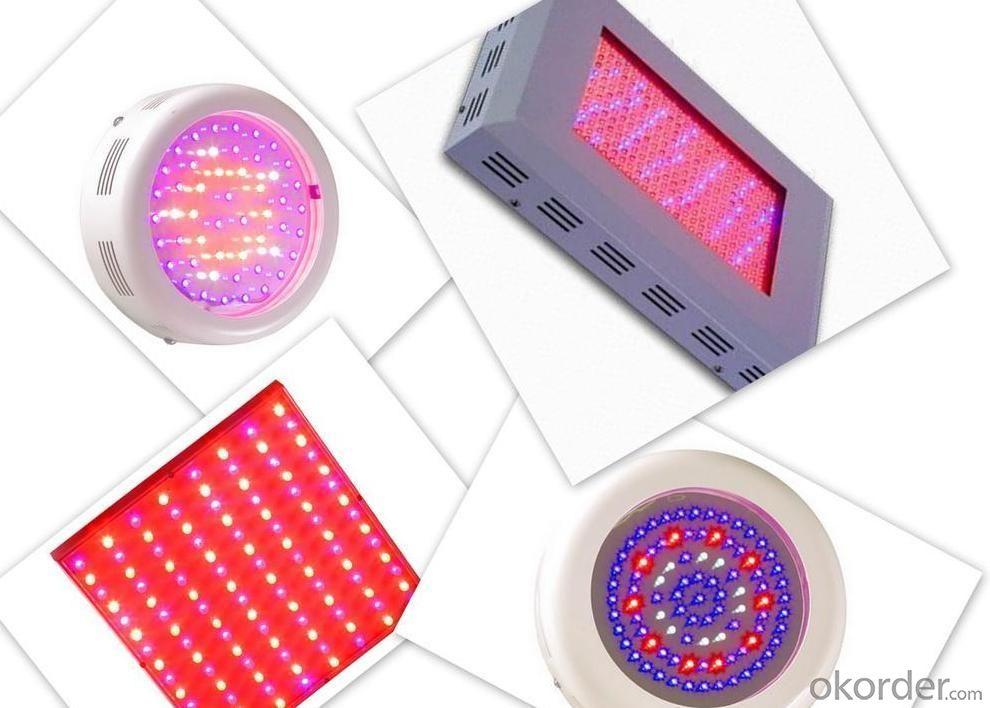 LED Grow Light-1