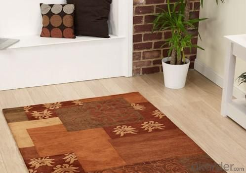 Fashionable Polyester Hook Carpet/Rug