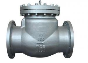 BFEA Best Selling Check Valve