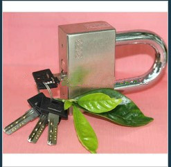 Nickel Plating Square Padlock With Computer Key