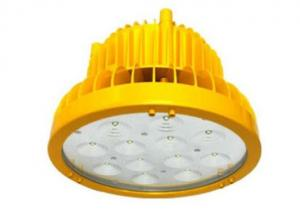 LED Explosion Proof Floodlight 25 Watt 40 Watt 60 Watt