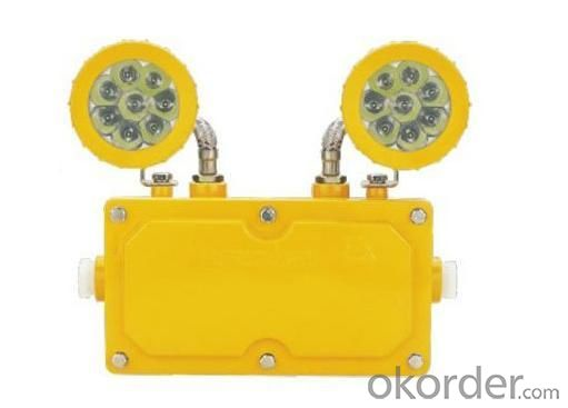 Anti Explosion LED Emergency Lamp