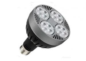 LED PAR30 Light 35 Watt