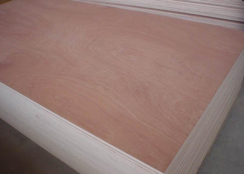 Bintangour Face Plywood