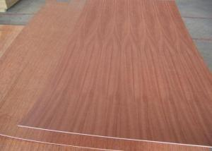 Sapeli Face Plywood
