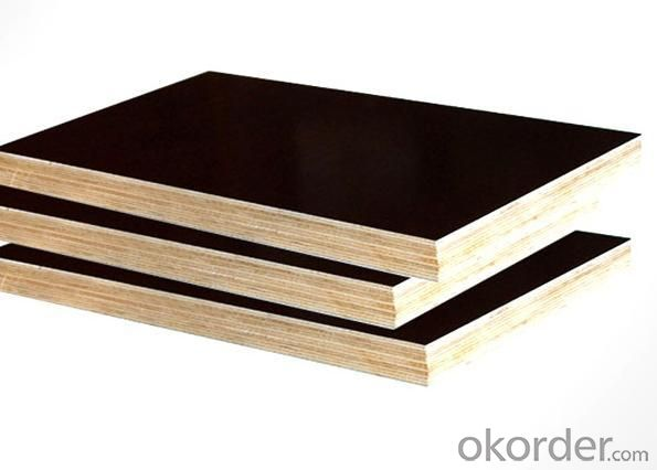 Poplar Core Black Film Faced Plywood