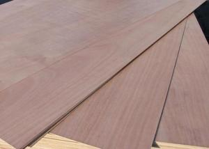 Eucalyptus Core Plywood
