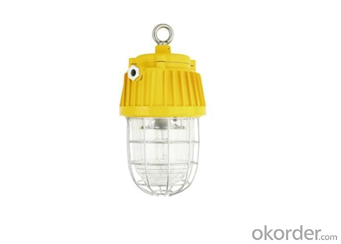 Best Sell Explosion Proof Mining Lamp IP65