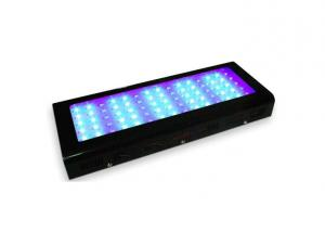Dimmable 300w Aquarium Led Lighting For Coral Reef
