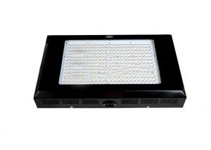 2013 Best LED Grow Panel 600w