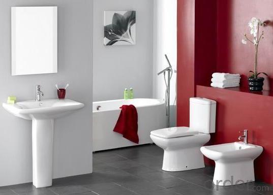 0520 Pedestal Washbasin