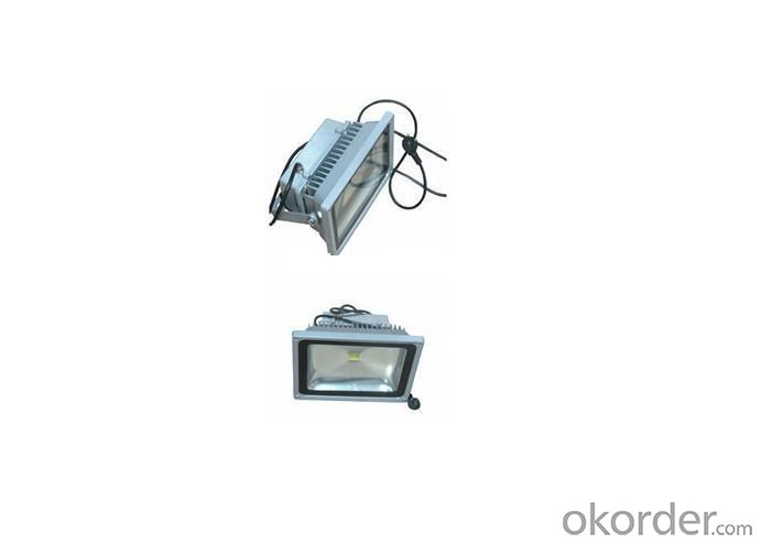 80W high power Led Floodlight
