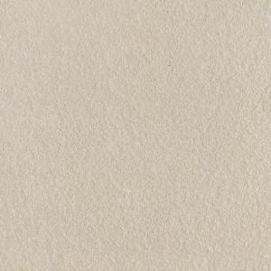 Glazed Tile-CMAX-600612P
