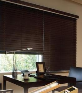 Motorized Panel Blinds