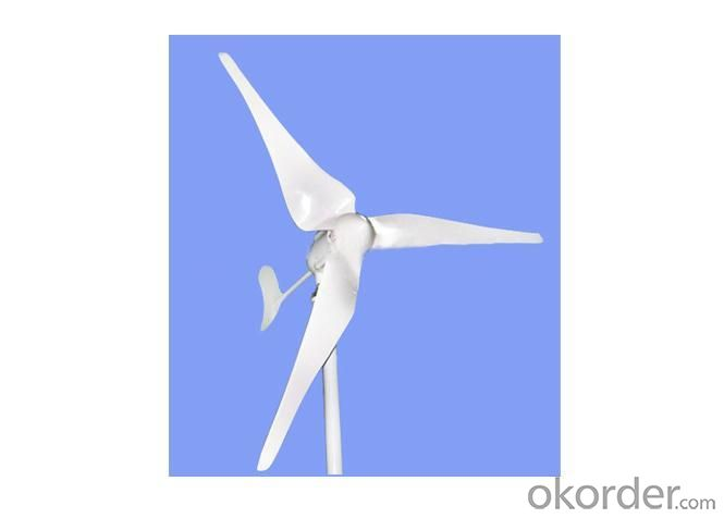 Wind Turbine 300W for Home Use