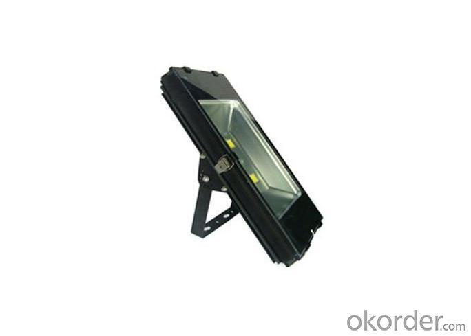 LED Floodlight 100W IP65 Bridgelux Leds