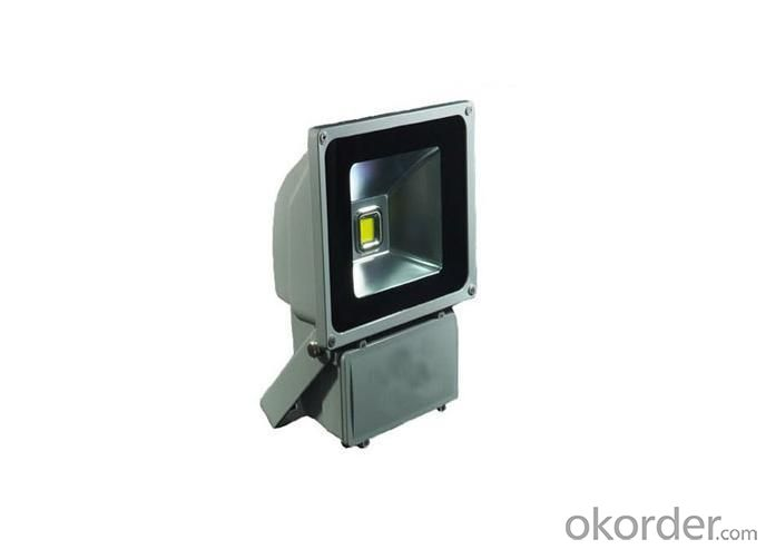 Led Floodlight 80W IP65 Bridgelux Leds