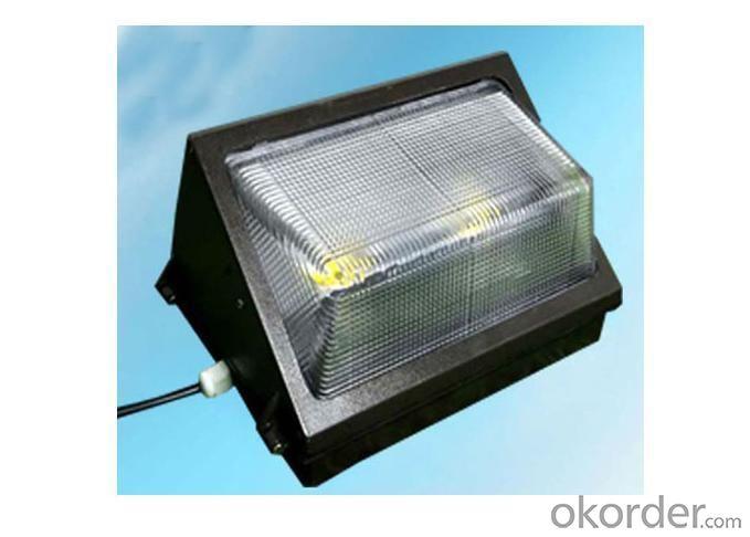 LED Outdoor Wall Light IP65 80 Watt