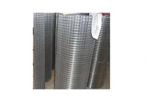 Galvanized Welded Wire Mesh BWG14-21