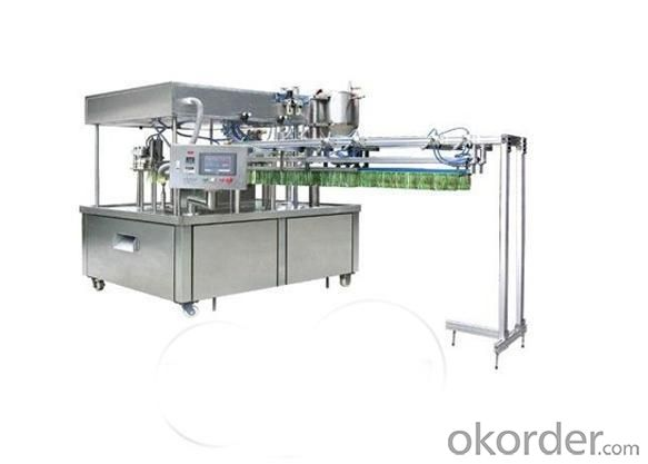 Form Fill Seal Machine CCS-2 with Automatic Stand up Bag