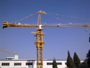 Tower Crane TC6024
